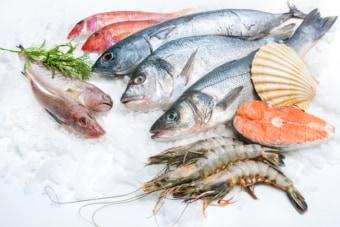 韓国では10ウォン以内の魚の贈答はOKとなった。